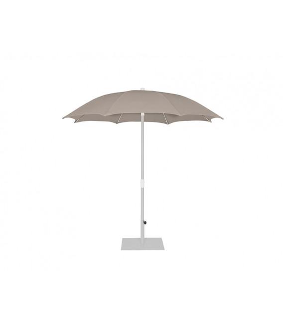 Palma Parasol
