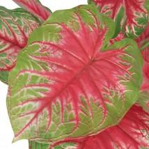 Planta de caladium artificial con macetero 70 cms verde y roja