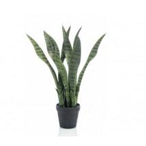 Emerald Sansevieria artificial en maceta 55 cms