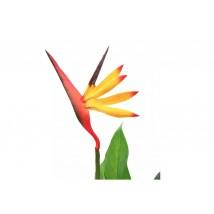 Planta strelitzia reginae ave del paraíso artificial 66 cms