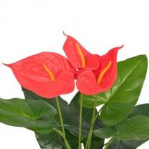 Planta de anturio artificial con maceta 45 cm roja y amarilla