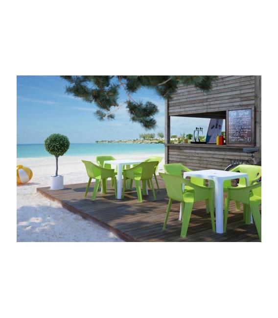 Mesa Beach Bar